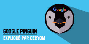 Google-Pinguin-réféfencement-SEO-explications-Google-Panda-algorithme-de-positionnement3