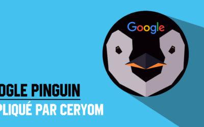 Google Penguin, les explications Ceryom